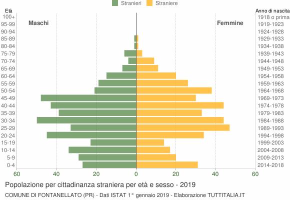 Grafico cittadini stranieri - Fontanellato 2019