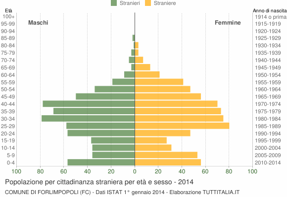 Grafico cittadini stranieri - Forlimpopoli 2014