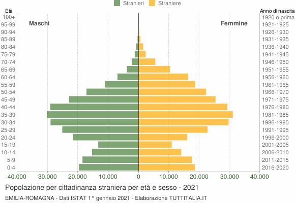 Grafico cittadini stranieri - 2021