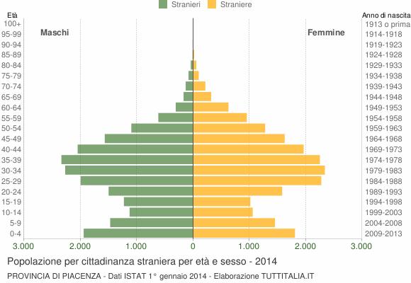 Grafico cittadini stranieri - 2014