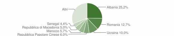 Grafico cittadinanza stranieri - 2010