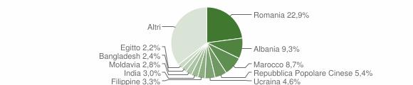 Grafico cittadinanza stranieri - 2016