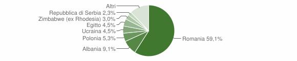 Grafico cittadinanza stranieri - Ciciliano 2018