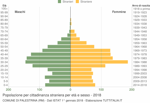 Grafico cittadini stranieri - Palestrina 2018