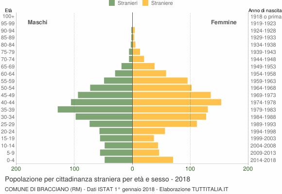 Grafico cittadini stranieri - Bracciano 2018
