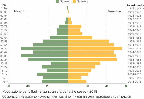 Grafico cittadini stranieri - Trevignano Romano 2018