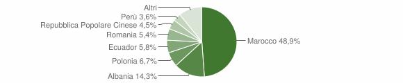 Grafico cittadinanza stranieri - Cicagna 2018