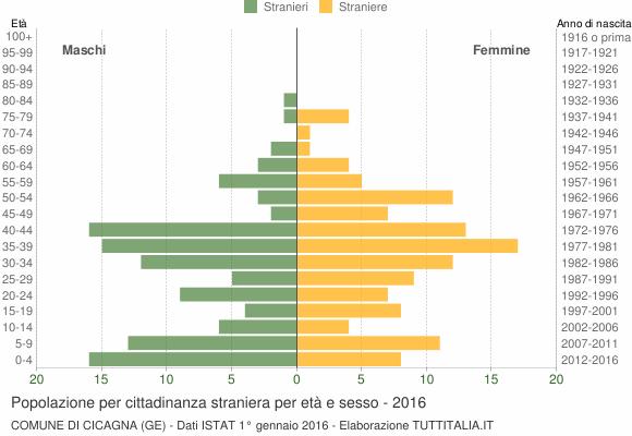 Grafico cittadini stranieri - Cicagna 2016