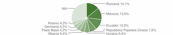 Grafico cittadinanza stranieri - Leivi 2019