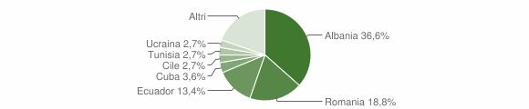 Grafico cittadinanza stranieri - Bargagli 2019