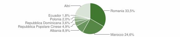 Grafico cittadinanza stranieri - Follo 2013