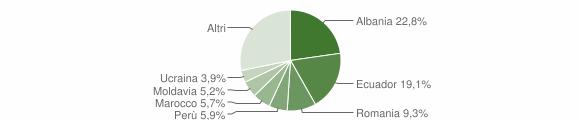 Grafico cittadinanza stranieri - Lavagna 2010