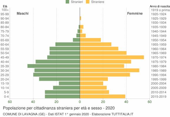 Grafico cittadini stranieri - Lavagna 2020