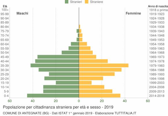 Grafico cittadini stranieri - Antegnate 2019