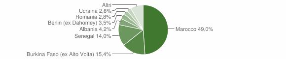 Grafico cittadinanza stranieri - Barghe 2013
