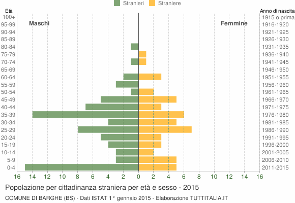 Grafico cittadini stranieri - Barghe 2015
