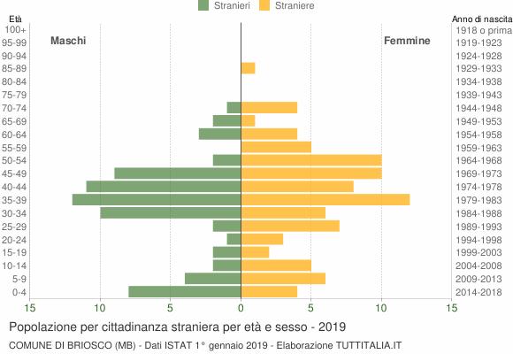Grafico cittadini stranieri - Briosco 2019