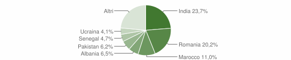 Grafico cittadinanza stranieri - Manerbio 2018