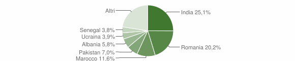 Grafico cittadinanza stranieri - Manerbio 2019