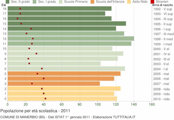 Grafico Popolazione in età scolastica - Manerbio 2011