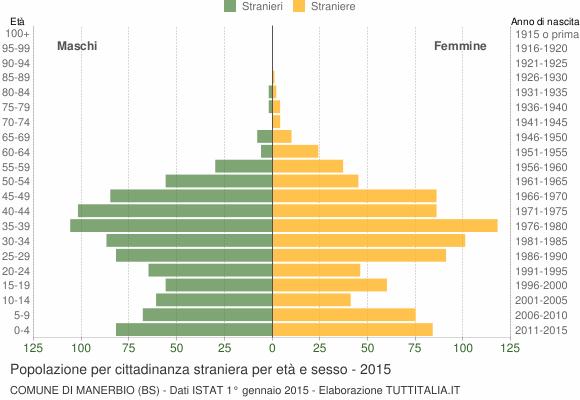 Grafico cittadini stranieri - Manerbio 2015