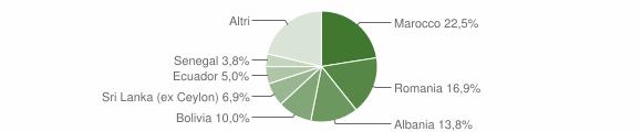 Grafico cittadinanza stranieri - Aicurzio 2013