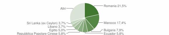 Grafico cittadinanza stranieri - Caponago 2010
