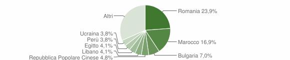 Grafico cittadinanza stranieri - Caponago 2013