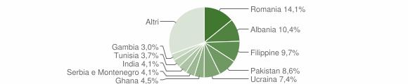 Grafico cittadinanza stranieri - Cellatica 2008