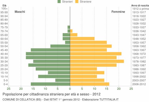 Grafico cittadini stranieri - Cellatica 2012