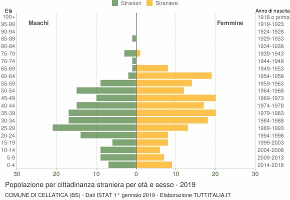 Grafico cittadini stranieri - Cellatica 2019