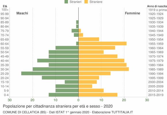 Grafico cittadini stranieri - Cellatica 2020