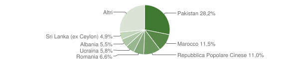 Grafico cittadinanza stranieri - Vanzaghello 2019