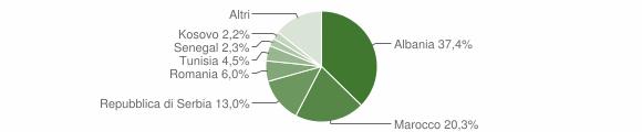 Grafico cittadinanza stranieri - Castrezzato 2010
