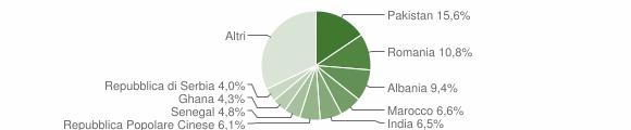 Grafico cittadinanza stranieri - Roncadelle 2010