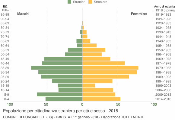 Grafico cittadini stranieri - Roncadelle 2018