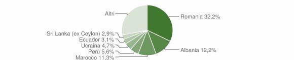 Grafico cittadinanza stranieri - Cambiago 2013