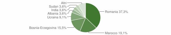 Grafico cittadinanza stranieri - Cedegolo 2008