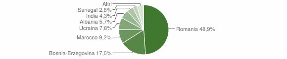 Grafico cittadinanza stranieri - Cedegolo 2011