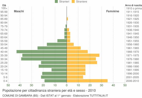 Grafico cittadini stranieri - Gambara 2010