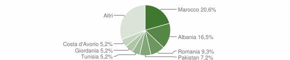 Grafico cittadinanza stranieri - Bovegno 2013