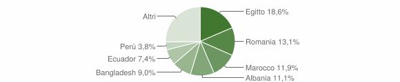 Grafico cittadinanza stranieri - Casalpusterlengo 2011