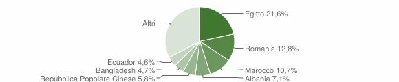 Grafico cittadinanza stranieri - Casalpusterlengo 2019