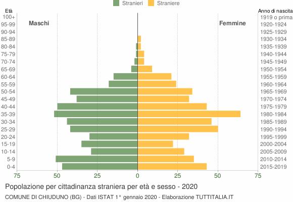 Grafico cittadini stranieri - Chiuduno 2020