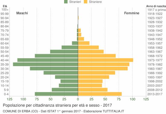 Grafico cittadini stranieri - Erba 2017