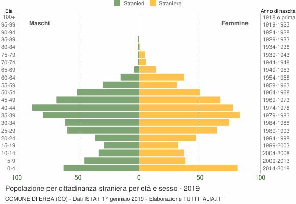 Grafico cittadini stranieri - Erba 2019