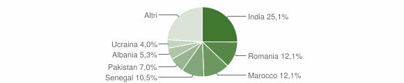 Grafico cittadinanza stranieri - Mairano 2009