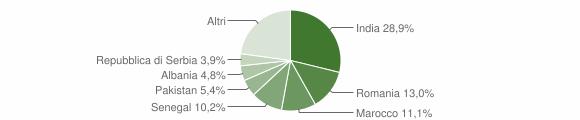 Grafico cittadinanza stranieri - Mairano 2010