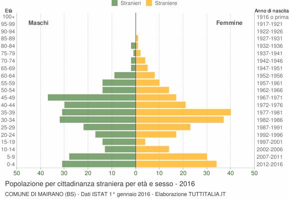 Grafico cittadini stranieri - Mairano 2016