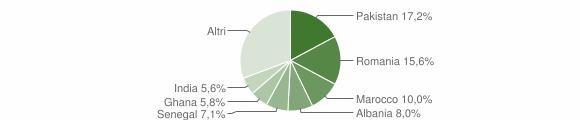 Grafico cittadinanza stranieri - Ospitaletto 2010